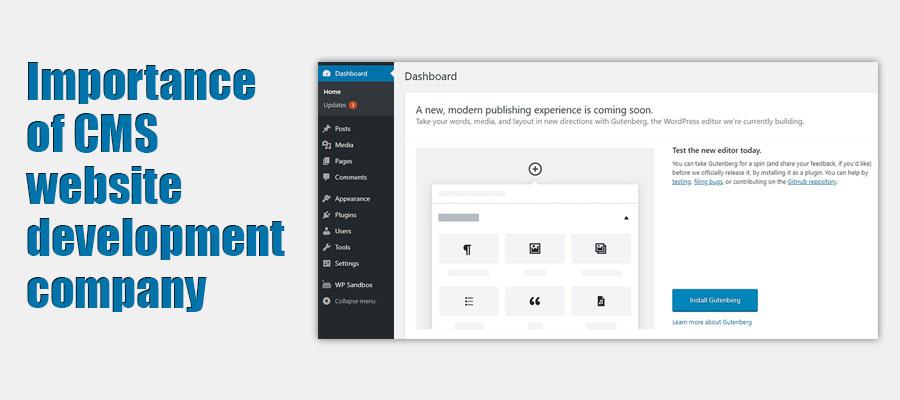 CMS-website-development